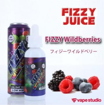 Fizzy Juice Wild Berries 55ml